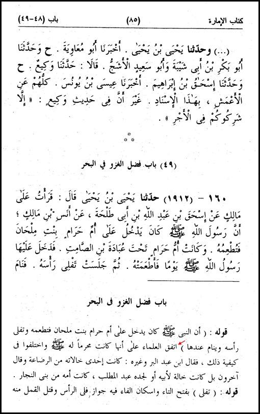 ج13 ص85